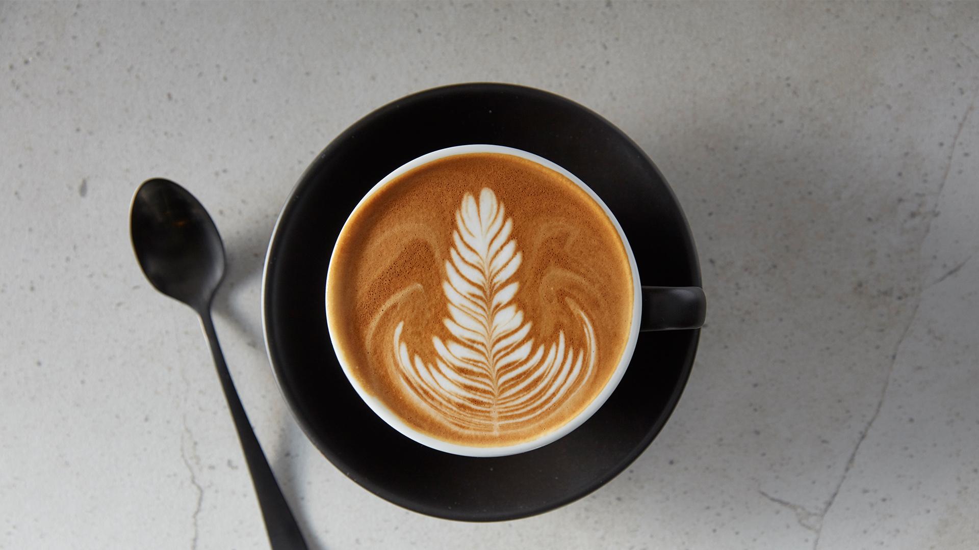 gloria jeans coffee georgia